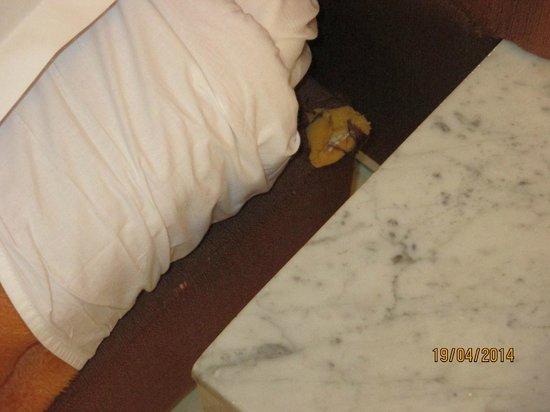 Hôtel Riviera Resort : chewed up mmmmm new sexual kink maybe