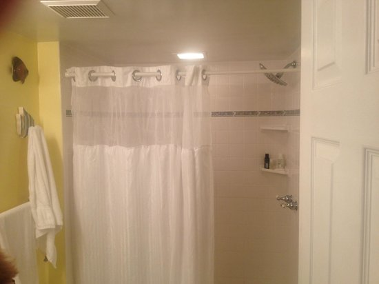 Ocean Pointe Suites at Key Largo: master bathroom without spa tub!
