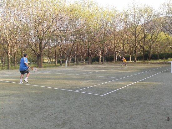 Quinta Do Casal Do Condado: La pista de tenis
