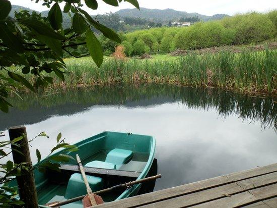 Quinta Do Casal Do Condado: El estanque con la barca