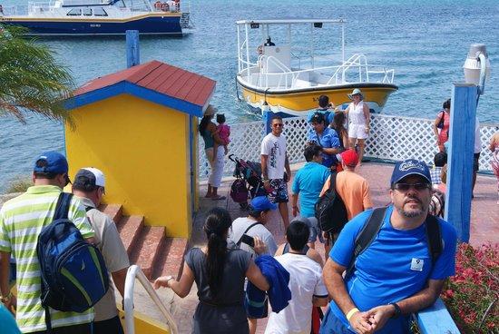 De Palm Island: momento de embarcar