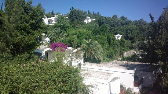 Daphnila Bay Thalasso: Отель
