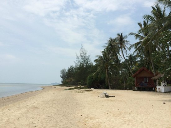 Morning Star Resort: view
