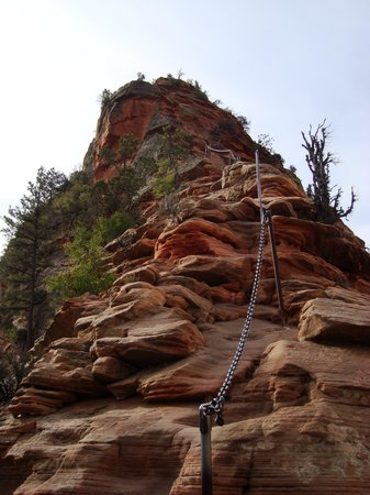Angel's Landing: Looking up during the climb to Angels Landing