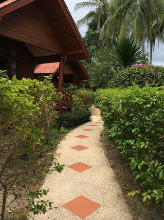 Morning Star Resort: Good gardening