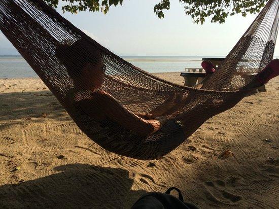 Morning Star Resort: realixing