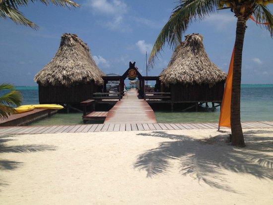 Ramon's Village Resort: Dive Shop