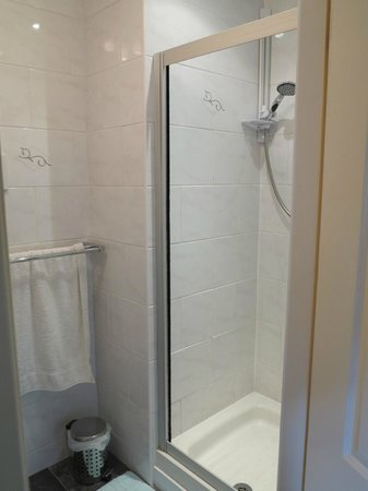 Rustic View Bed & Breakfast : Good shower