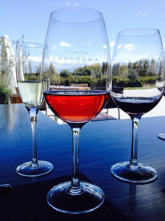 Casarena Restaurante : Great wines, must try the Rose
