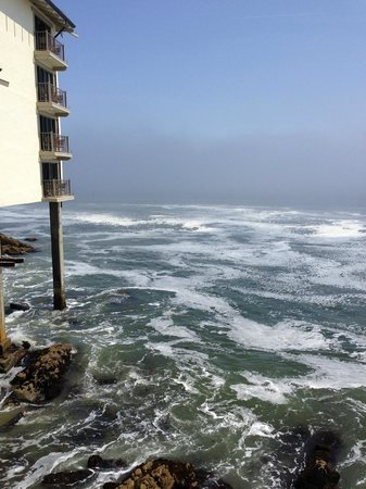 Monterey Plaza Hotel & Spa: View from the room