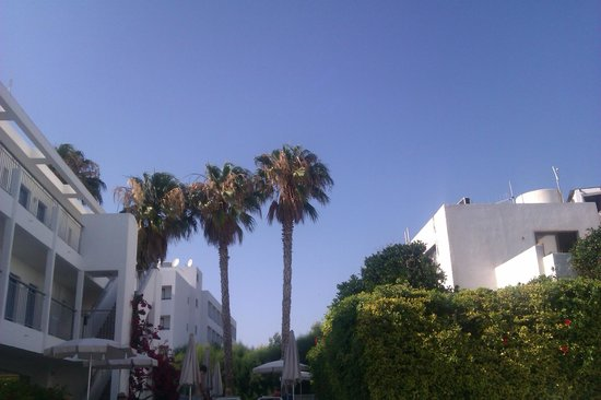 Nissi Park Hotel : View from a sunlounger