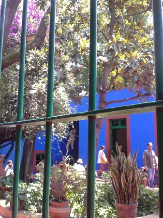 Musée Frida Kahlo : View of Patio from inside the Blue House.