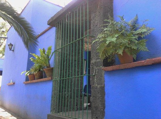 Musée Frida Kahlo : Walking where Frida  walked for years.