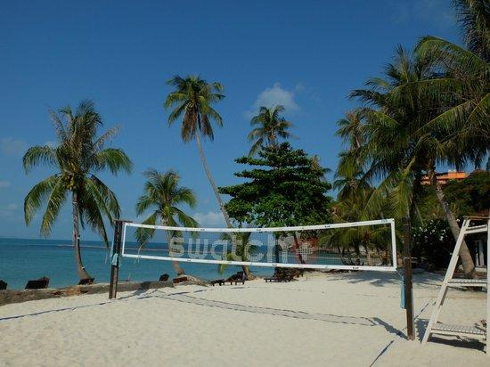 Cocohut Village Beach Resort & Spa : beach