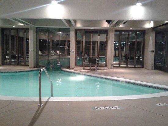 Atlanta Marriott Marquis: Indoor portion of pool