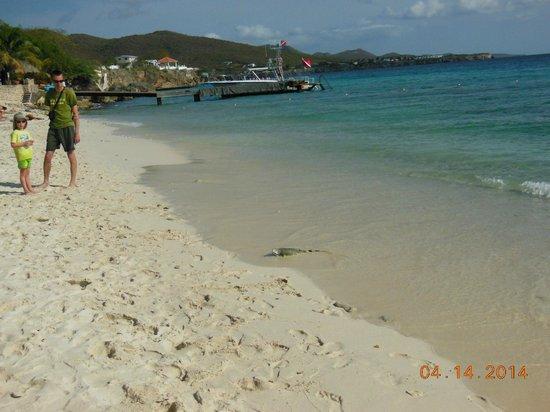 Kura Hulanda Lodge & Beach Club: Beach