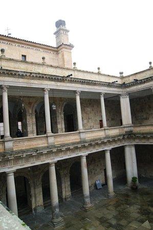 Colegio de Anaya (Palacio de Anaya) : interior del claustro