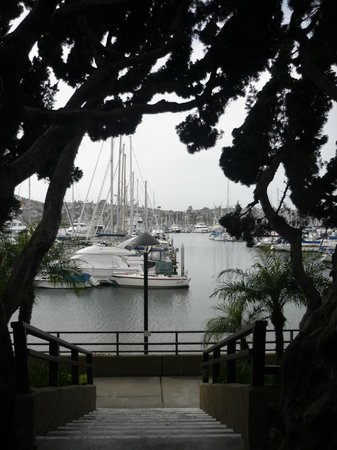 BEST WESTERN PLUS Island Palms Hotel & Marina: view from room