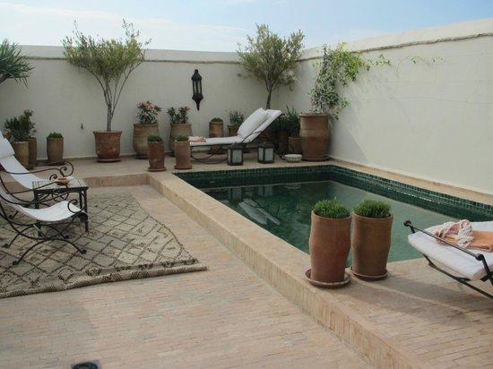 Dar Mo'da: la piscina in terrazza