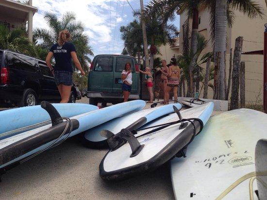 WildMex: Surfin safari!!