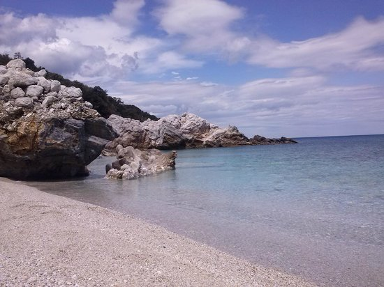 Amanita: Παραλία.