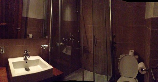 Garni Hotel Konak: Nice bathrooms with a shower head that would make Newman and Kramer proud (caution - Seinfeld re