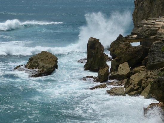 Suite Paradise: Shipwreck Beach