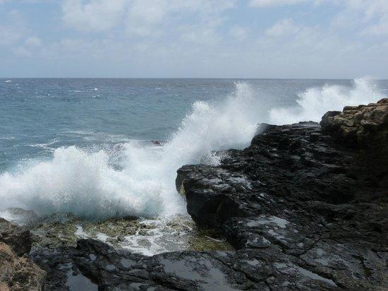 Suite Paradise: Keoneloa Bay