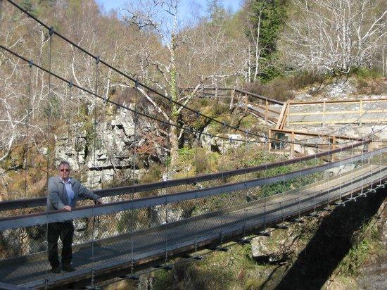 Rogie Falls: Standing on the bridge overlooking the Falls of Rogie