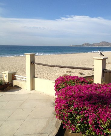Barcelo Gran Faro Los Cabos : View of beach at breakfast and lunch