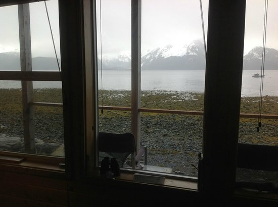 Angels Rest on Resurrection Bay, LLC : View from the room