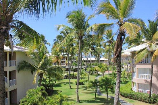 Sirenis Punta Cana Resort Casino & Aquagames: Вид из номера