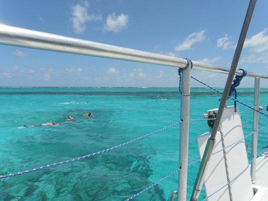 Lambada & Tango: snorkelling off Prickly Pear
