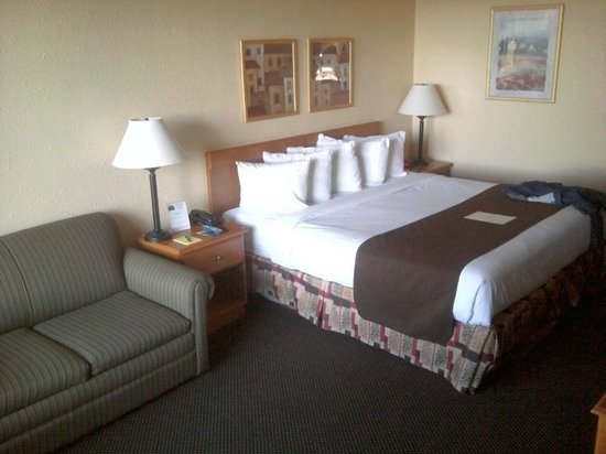 Whitten Inn University: Big Bed , Couch