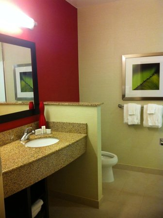 Courtyard by Marriott Galveston Island: bathroom in our room