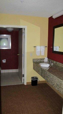 Courtyard Burlington Williston: Washroom & Sink