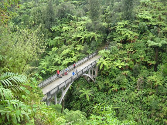 Bridge to Nowhere Tours: View of bridge from lookout