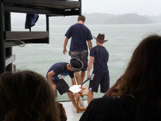 The Rock Adventure Cruise : The new crew being forced to jump into the sea!