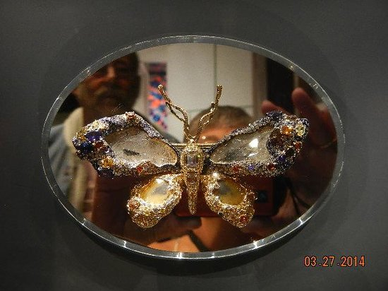 National Museum of Natural History : butterfly