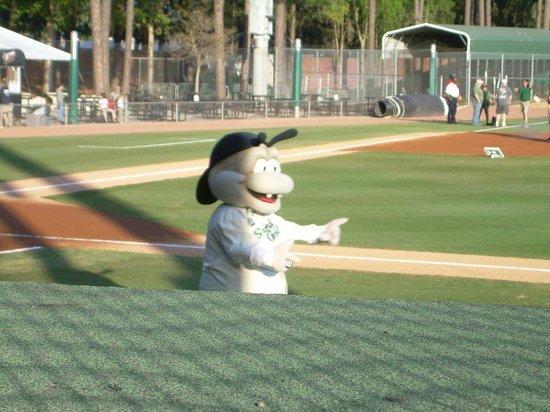 Grayson Stadium: Mascot