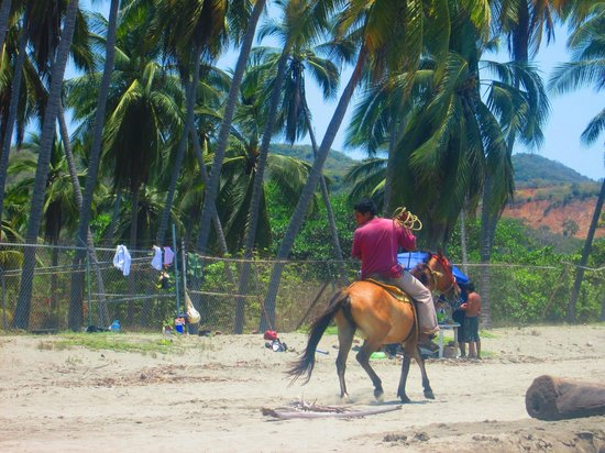 Playa Linda: guy on a horse