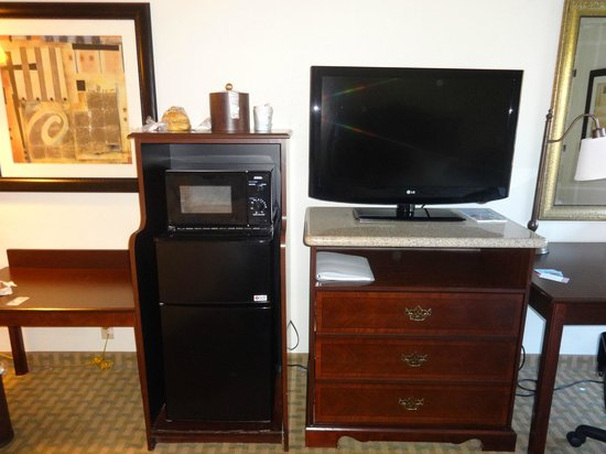 Hampton Inn Orlando/Lake Buena Vista: Quarto
