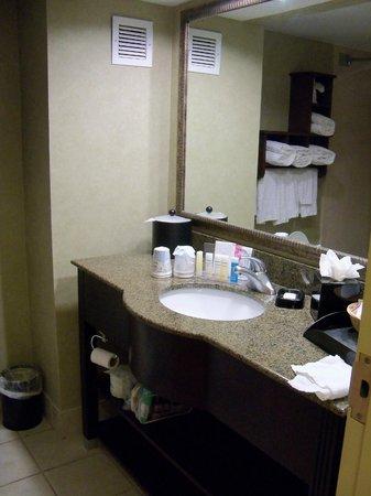 Hampton Inn & Suites Fort Myers Beach / Sanibel Gateway: Very nice bathroom