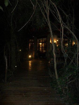 La Aldea de la Selva Lodge: De noche caminando