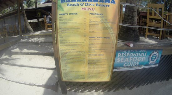 Thirsty Turtle Bar and Grill: Their awesome menu