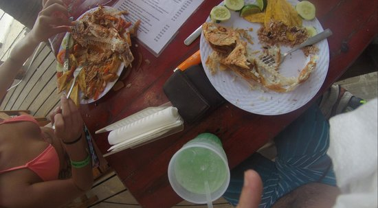 Thirsty Turtle Bar and Grill: Whats left of the food... And a little bit of the drink menu