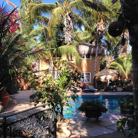 The Bungalows Hotel: Pool and courtyard