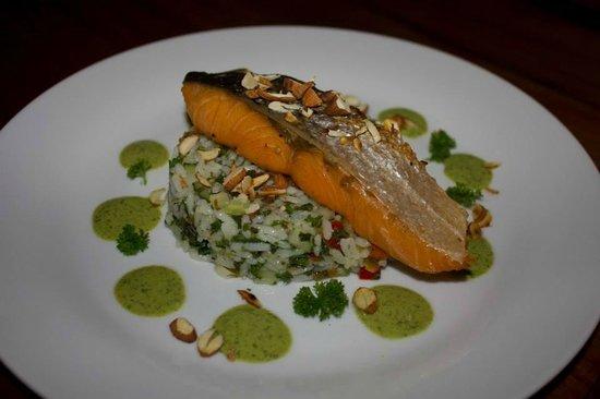 Azul Restaurante: Azul Salmon