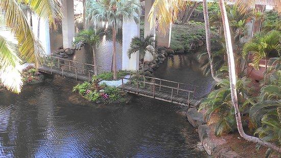 Wyndham Grand Rio Mar Puerto Rico Golf & Beach Resort: very pretty