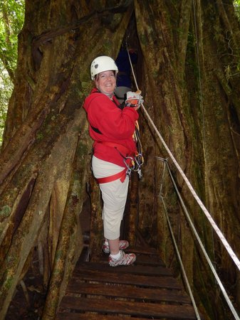 The Original Canopy Tour: Getting ready to climb up through the tree